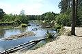 Rzeka Liwiec - panoramio (3).jpg