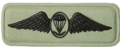 SANDF Qualification Paratrooper Instructor regular badge embossed.png