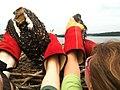 SM Ospreycam 2013-07-09 (007) intervention Smith Mountain Lake State Park (9262144857).jpg