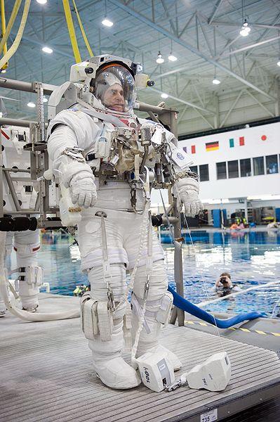 [Obrazek: 399px-STS134_Greg_Chamitoff_Jan10.jpg]