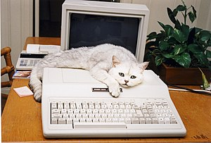 Sabu with his Tandy 1000 Computer.jpg