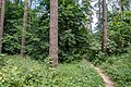 Sakaliny local biological reserve p22.jpg