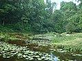 Saldus, Saldus pilsēta, Latvia - panoramio (3).jpg