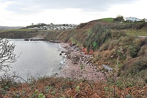 Paignton - Saltern Cove is a Site of Special Scientific Interest.