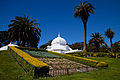 San Francisco Conservatory of Flowers-11.jpg
