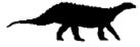 Scelidosaurus silhouette.jpg