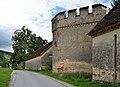 Schloss Thannhausen wall 01.jpg