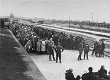 Une photographie montre des centaines d'hommes et de femmes en deux lignes sur une plate-forme à côté de deux lignes de chemin de fer.  Une autre file de prisonniers s'est formée de l'autre côté des rails.