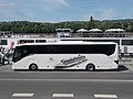 Setra Viking line tour bus, Garam I. pier, 2018 Újlipótváros.jpg
