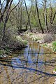 Shepman Run looking downstream.jpg