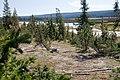 Shoshone Lake (3943878279).jpg