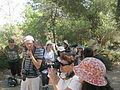 Shuni (Jabotinsky Park) in Binyamina 07.JPG