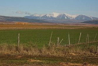 Sierra del Moncayo desde el campo de Gómara.jpg