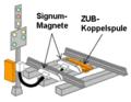Signum + ZUB.PNG