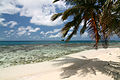 Silk Caye, Stann Creek, Belize 2.jpg