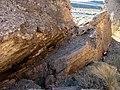 Silvercreek Wash - panoramio - Zzyzx (4).jpg