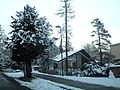 Sneh Starý Smokovec 17 Slovensko.jpg