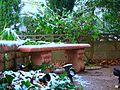 Snow Garden (3116895364).jpg