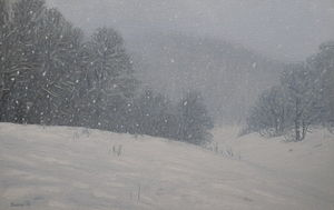 Snowing painted by Márton Zsoldos