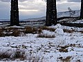 Snowman at Ribblehead - geograph.org.uk - 1151883.jpg