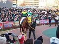 Sound True and Takuya Ono in Tokyo Daishoten at Oi racecourse (31984223335).jpg