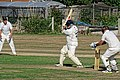 Southwater CC v. Chichester Priory Park CC at Southwater, West Sussex, England 087.jpg