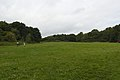 Spital Fields, Wirral 1.jpg