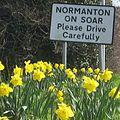 Spring in moor lane 2.jpg