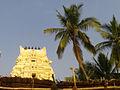 Sri Varadaraja Swamy Temple Gopuram at Kanipakam 02.jpg