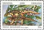 Stamp of Ukraine s341.jpg