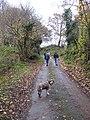 Steep ascent, Cut Throat Lane - geograph.org.uk - 1594205.jpg