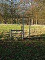 Stile on Geerings Farm - geograph.org.uk - 92601.jpg