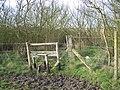 Stile on footpath, near Dagnam Saltings - geograph.org.uk - 1157951.jpg
