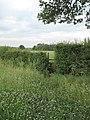 Stile on the Footpath to Lower Kinnerton - geograph.org.uk - 1380359.jpg