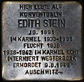 Stoplerstein for Edith Stein.