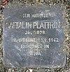 Stolperstein Kirchstr 84 (Marfe) Naftalin Plattring.jpg
