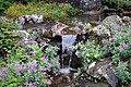 Stream at Reykjavík botanical garden, July 2019.jpg