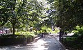 Stuyvesant Square in summer.jpg