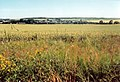 Summertime - panoramio (1).jpg