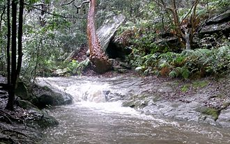 Cammeraygal - Image: Swaines Creek Cave & Angophora