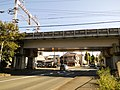 Tōkaidō Shinkansen Ryuzenzi Bv.jpg