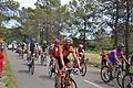 TDF2012 13e étape peloton 22.JPG