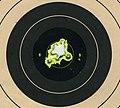 Target 223 Savage 10FP 25 shot.jpg