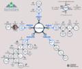 Techstars visual summary (2014).png