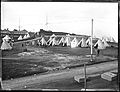Tents at Fort Scratchley 4 April 1905 Flickr 3631694228.jpg