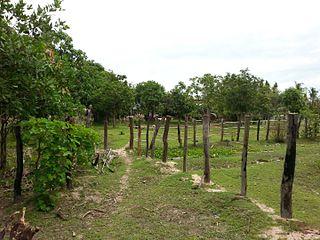 Tuek Phos District District in Kampong Chhnang, Cambodia