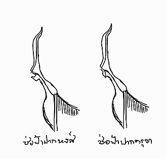 Chofa - Two main types of Chofa: Pak Hong; Swan's tip (left) and Pak Kruth; Garuda's tip (right)