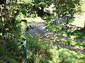 The Coed-y-llyn Farm access road - geograph.org.uk - 1483570.jpg