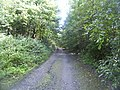 The Lymes Road - geograph.org.uk - 58760.jpg