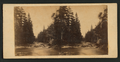 The Merced River, looking east, by E. & H.T. Anthony (Firm) 2.png
